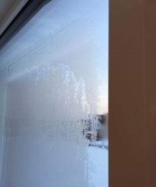 窓の外が凍結