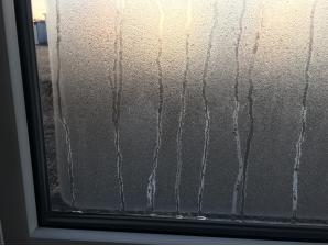 凍結した窓