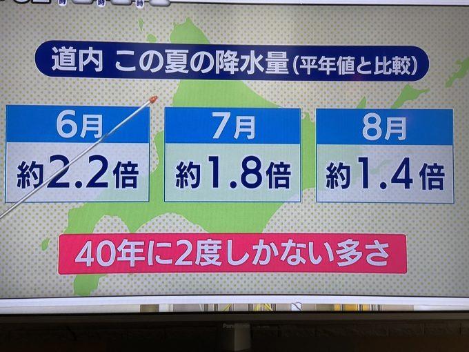 北海道の今年の降水量