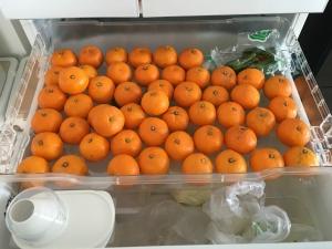 冷蔵庫の冬ミカン