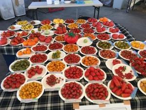 トマトイベント