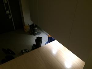 シューズウォール下の照明点灯時の玄関