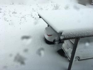 11月上旬に雪