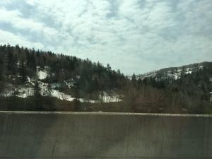 崖に残った雪
