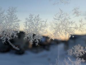 霜の結晶1